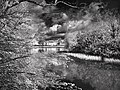 Infrared Look - Flickr - senpatientulo.jpg