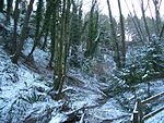 Interlaken-Park-snow-2897.jpg