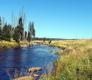Jizera (river)