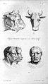 J.C. Lavater, L'Art de connaitre les hommes... Wellcome L0025297.jpg