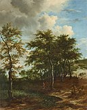 Jacob van Ruisdael-Landscape with Tall Trees Lempertz-1118-1583.jpg
