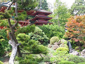 Tea ceremony - A Japanese tea garden