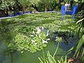 Jardin Majorelle 033.JPG