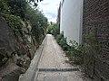 Jardin Paul-Didier - septembre 2018 - 1.JPG
