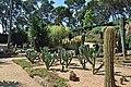 Jardines de cap roig-calella de palafurgell-8-2013 (13).JPG