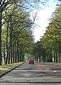 Jesmond Dene Road - geograph.org.uk - 1540717.jpg
