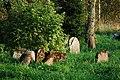 Jewish Cemetery in Lutowiska. Bieszczady Poland - panoramio (7).jpg