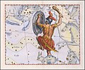 Johannes Hevelius - Orion.jpg