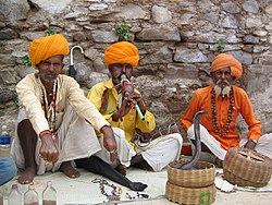 Joueur de flute du rajasthan 1700px.jpg