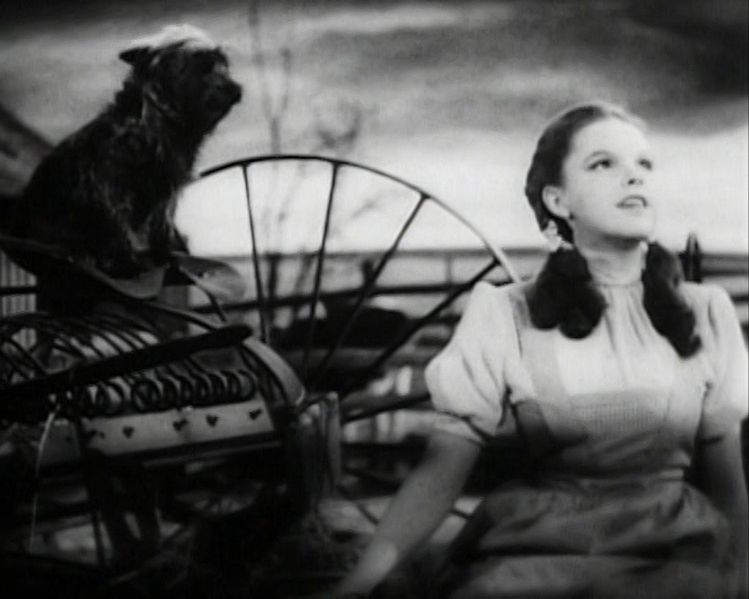 File:Judy Garland Over the Rainbow 2.jpg