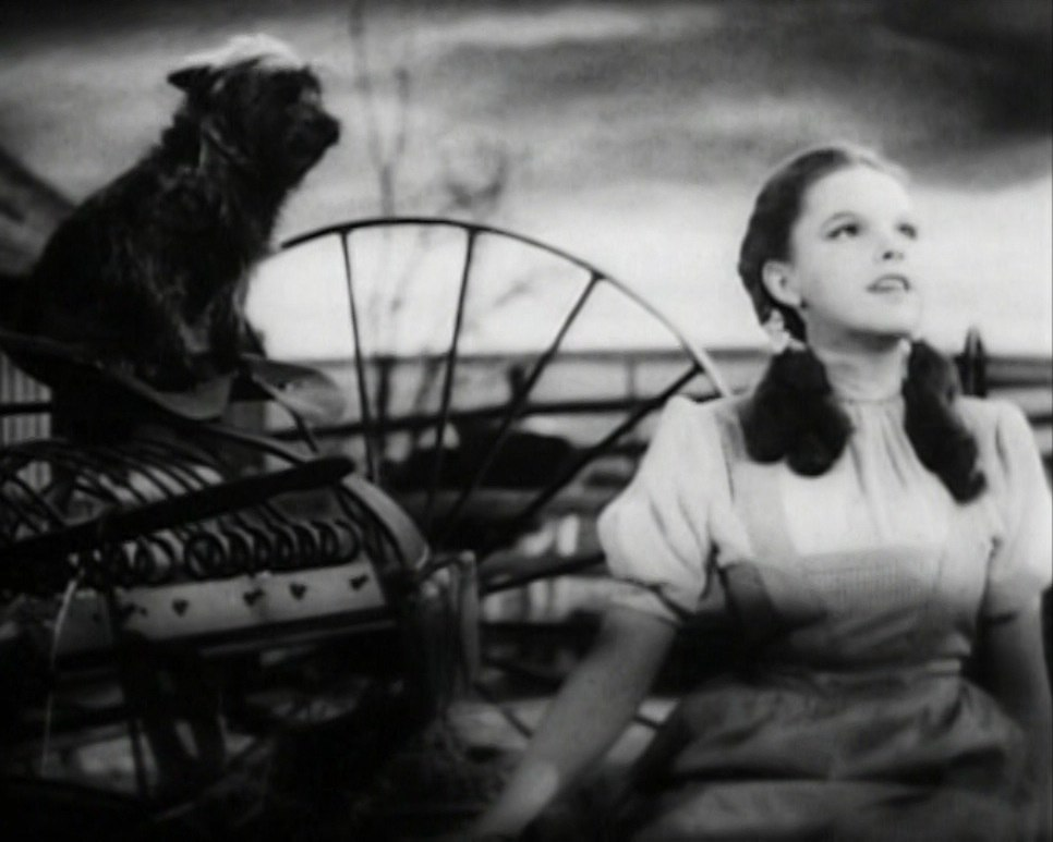Judy Garland Over the Rainbow 2