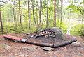 Jyväskylä - campfire.jpg