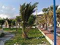 Kalabrien Promenade 2358.jpg