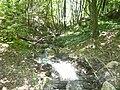 Kaludjerska Reka in Rogachevo4.JPG