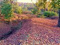 Khos valley in Summer, Devgadh Baria.jpg
