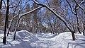 Kirovskiy rayon, Khabarovsk, Khabarovskiy kray, Russia - panoramio (208).jpg