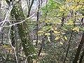 Klausdorf - Bodengeopfad - panoramio (2).jpg