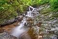 Kleines Wiesental - Klemmbach-Wasserfälle Bild 4.jpg
