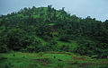 Konkan Railway - views from train on a Monsoon.JPG