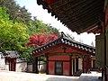 Korea-Andong-Dosan Seowon 3004-06.JPG