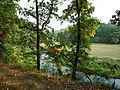 Kowanowko forests, gm. Oborniki (Welna Valley) (8).JPG