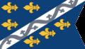 Kraljevina Bosna steg (rotated).png