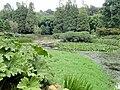 Kunming Botanical Garden - DSC03075.JPG