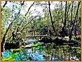 Kurşunlu şelalesi ^©Abdullah Kiyga - panoramio.jpg