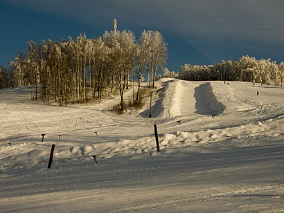 How to get to Kuutsemägi with public transit - About the place