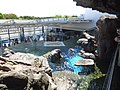 Kyoto Aquarium in 2013-5-2 No,38.JPG