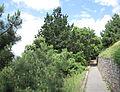 Lé Mont ès Pendus Saint Hélyi Jèrri Juîn 2012 29.jpg