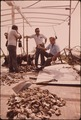 LAKE BORGNE OYSTERMEN CLAIM RELEASE OF MISSISSIPPI RIVER FLOOD WATERS HAS POLLUTED THEIR OYSTER BEDS. SOME OF THE MEN... - NARA - 552876.tif