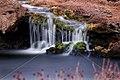 LANDSCAPE TAPANAHONY RIVER WATERFALL SURINAM AMAZONE SOUTH-AMERICA (32636173880).jpg