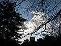 LIGHTS - panoramio - Behrooz Rezvani (4).jpg
