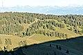 La Dôle - panoramio (99).jpg