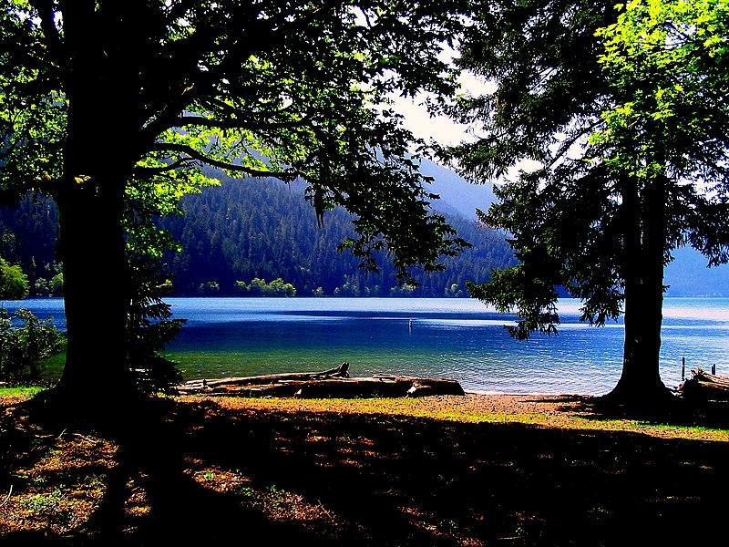 Washington State Western Lindaland