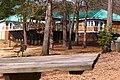Lake Wheeler Park - panoramio (16).jpg
