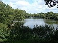 Lake at Riec - panoramio.jpg