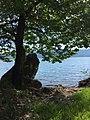 Lake trichonida 07.jpg