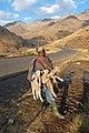 Lamb Shepherd - panoramio.jpg