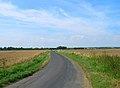 Lane to Appledore, Walland Marsh - geograph.org.uk - 215430.jpg