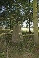 Langham Trig - geograph.org.uk - 251918.jpg