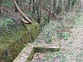 Leat beside cycleway - geograph.org.uk - 154286.jpg