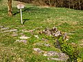 Leidingshofer Tal Stein Quelle P4RM2429.jpg