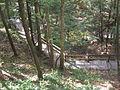 Leonard Harrison State Park Turkey Path 4.jpg