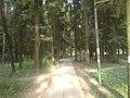 Lieninski District, Mogilev, Belarus - panoramio (376).jpg