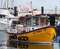 Lil' toot boat 4984.jpg
