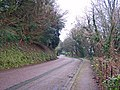 Lincombe Drive, Torquay - geograph.org.uk - 1639983.jpg