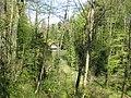 Lochweiher - panoramio.jpg