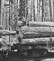 Logs on flatcars 1942.jpg
